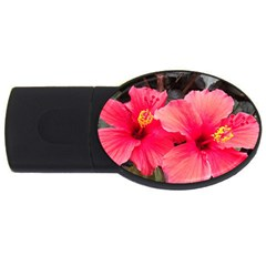 Red Hibiscus 4gb Usb Flash Drive (oval) by ADIStyle