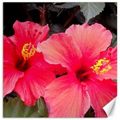 Red Hibiscus Canvas 16  X 16  (unframed) by ADIStyle