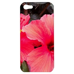 Red Hibiscus Apple Iphone 5 Hardshell Case by ADIStyle