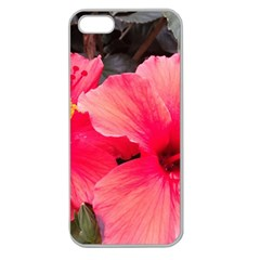 Red Hibiscus Apple Seamless Iphone 5 Case (clear) by ADIStyle