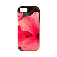 Red Hibiscus Apple Iphone 5 Classic Hardshell Case (pc+silicone) by ADIStyle