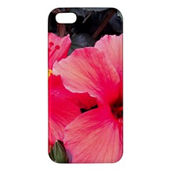 Red Hibiscus Iphone 5 Premium Hardshell Case by ADIStyle