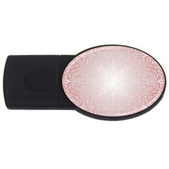 Pink Damask 4gb Usb Flash Drive (oval) by ADIStyle