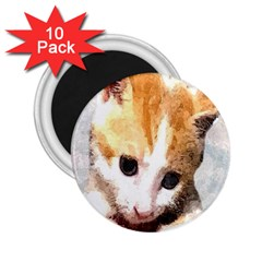 Sweet Face :) 2 25  Button Magnet (10 Pack)