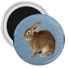 Cute Bunny 3  Button Magnet by mysticalimages