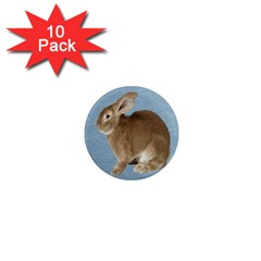 Cute Bunny 1  Mini Button Magnet (10 Pack)