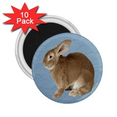 Cute Bunny 2 25  Button Magnet (10 Pack) by mysticalimages