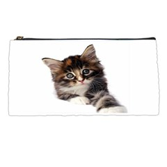 Curious Kitty Pencil Case by mysticalimages