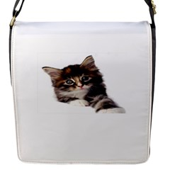 Curious Kitty Flap Closure Messenger Bag (small) by mysticalimages