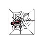 Spider in web Magnet (Square)