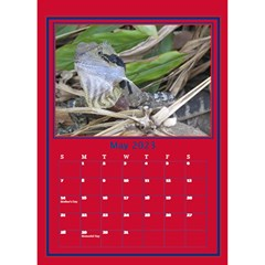 A Little Perfect Desktop Calendar By Deborah   Desktop Calendar 6  X 8 5    Fnag7i5u5k71   Www Artscow Com May 2018