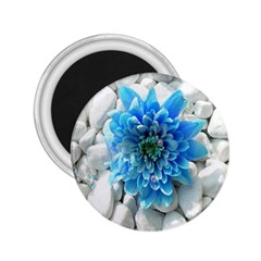 Blue 2 25  Button Magnet by Contest1650520