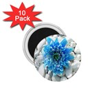 Blue 1.75  Button Magnet (10 pack) Front