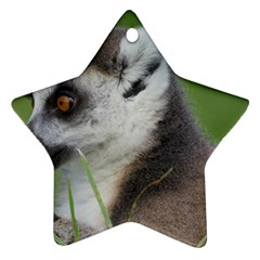 Ring Tailed Lemur  2 Star Ornament by smokeart