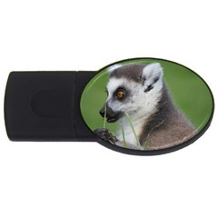 Ring Tailed Lemur  2 4gb Usb Flash Drive (oval) by smokeart