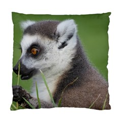Ring Tailed Lemur  2 Cushion Case (one Side) by smokeart