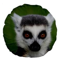 Ring Tailed Lemur 18  Premium Round Cushion