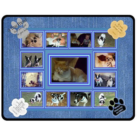 Cat/dog Lover Medium Blanket By Joy Johns   Fleece Blanket (medium)   Cgvrkfgn8xki   Www Artscow Com 60 x50  Blanket Front
