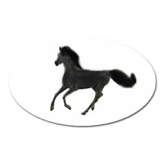 Running Horse Magnet (oval) by mysticalimages