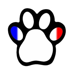 france flag Magnet (Paw Print) by Brenco