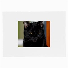 I Am Watching You! Glasses Cloth (large, Two Sided)