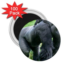 Gorilla Dad 2 25  Button Magnet (100 Pack)