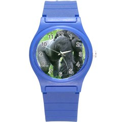 Gorilla Dad Plastic Sport Watch (small)