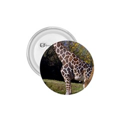 Giraffe 1 75  Button