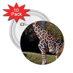 Giraffe 2 25  Button (10 Pack) by plindlau