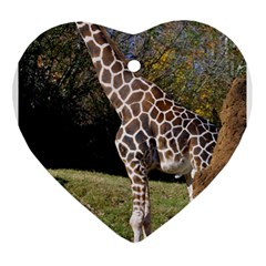 Giraffe Heart Ornament (two Sides) by plindlau