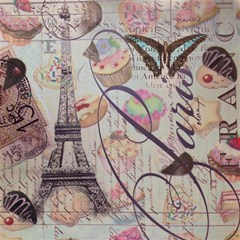French Pastry Vintage Scripts Floral Scripts Butterfly Eiffel Tower Vintage Paris Fashion Canvas 16  X 16  (unframed) by chicelegantboutique