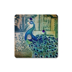 French Scripts Vintage Peacock Floral Paris Decor Magnet (square) by chicelegantboutique