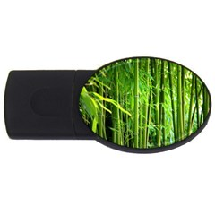 Bamboo 2gb Usb Flash Drive (oval) by Siebenhuehner