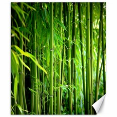 Bamboo Canvas 20  X 24  (unframed) by Siebenhuehner