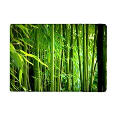 Bamboo Apple Ipad Mini Flip Case by Siebenhuehner