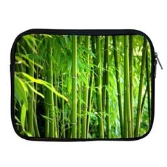 Bamboo Apple Ipad 2/3/4 Zipper Case