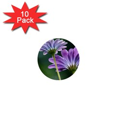 Flower 1  Mini Button (10 Pack) by Siebenhuehner