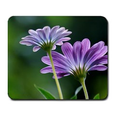 Flower Large Mouse Pad (rectangle) by Siebenhuehner
