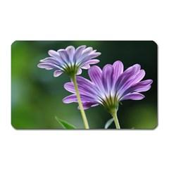 Flower Magnet (rectangular) by Siebenhuehner