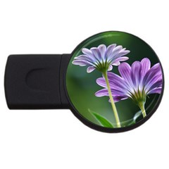 Flower 2gb Usb Flash Drive (round) by Siebenhuehner