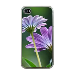Flower Apple Iphone 4 Case (clear) by Siebenhuehner