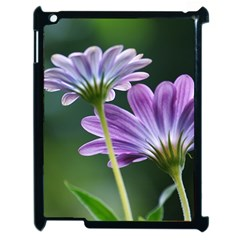 Flower Apple Ipad 2 Case (black) by Siebenhuehner