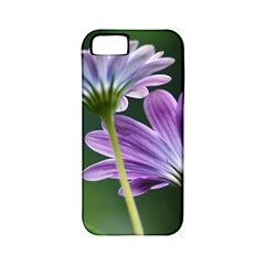 Flower Apple Iphone 5 Classic Hardshell Case (pc+silicone) by Siebenhuehner
