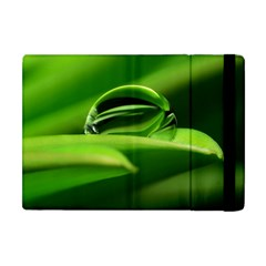 Waterdrop Apple Ipad Mini Flip Case by Siebenhuehner
