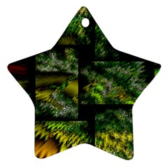 Modern Art Star Ornament by Siebenhuehner