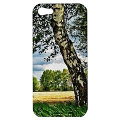 Trees Apple Iphone 5 Hardshell Case by Siebenhuehner