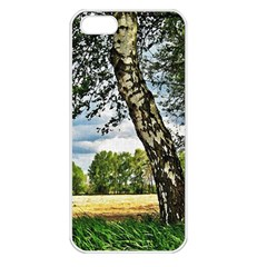 Trees Apple Iphone 5 Seamless Case (white) by Siebenhuehner