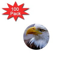 Bald Eagle 1  Mini Button Magnet (100 Pack) by Siebenhuehner