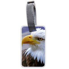Bald Eagle Luggage Tag (one Side) by Siebenhuehner