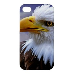 Bald Eagle Apple Iphone 4/4s Premium Hardshell Case by Siebenhuehner